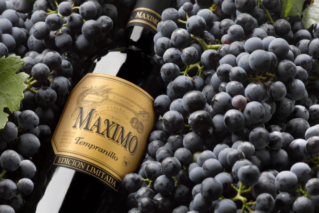 Сорт винограда Темпранильо
