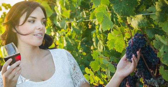 Польза винограда для организма женщины