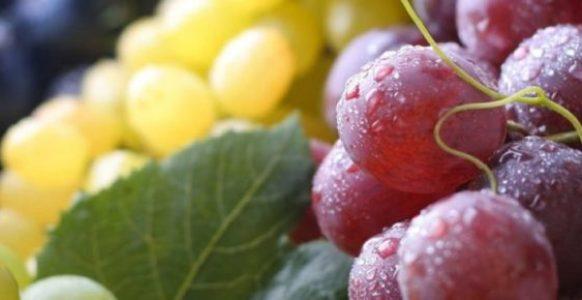 Калорийность винограда разных видов и сортов